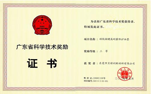 2008年省科技奖三等奖(硅胶按键高耐磨保护油墨)